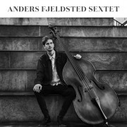 Anders Fjeldsted (CD)